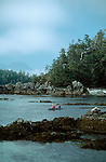 Sea kayakers, Barkley Sound, Pacific Rim National Park, Vancouver Island, British Columbia, Canada, Bob Ness, Tom Derrer, model released,.