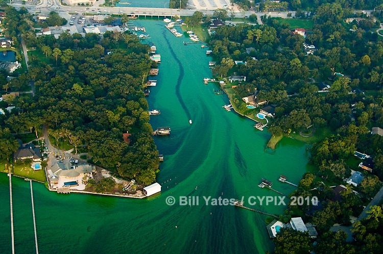 Algae on the St. Johns River