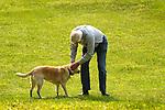 Tom Raup petting yellow labrador.