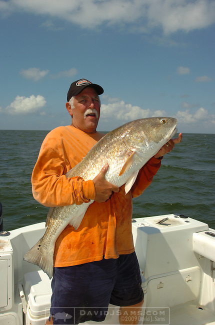 OFFSHORE FISHING.Chris Armstrong  shows a red drum he caught while fishing with Capt. Peace Marvel...Venice, Louisiana
