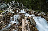 Mountain stream running into Lake O'Hara, Yoho National Park, Canada