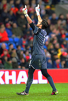 Jaime Penedo of Panama celebrates his team mates equaliser during the international friendly soccer match between Wales and Panama at Cardiff City Stadium, Cardiff, Wales, UK. Tuesday 14 November 2017.