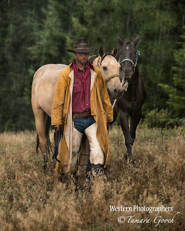 A photo of a cowboy leading two horses through the rain. Cowboy Photos, riding,roping,horseback