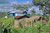 Little farm in mountains of Cordillera Septentrional, near Cabarete, Dominican Republic, AGPix_0143.