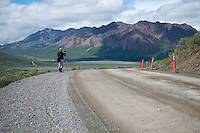 July 3, 2012, Ron Karpilo setting up a camera on the Denali Park Road, Denali National Park and Preserve, Alaska. Photo by Lacy Karpilo.