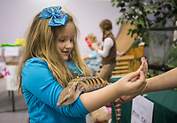 Hannah Barker, 6, of Springdale pets a blue tongue skink Tuesday, Feb. 11, 2020, at the Janie's Jungle Petting Zoo business created by student Janie Maddox, 10, of Gravette during the Social Homeschoolers Network annual Junior Entrepreneur Fair at Rogers Christian Church. Pre-kindergarten through high school students in the group created businesses and sold their home-made products and services to the public during the fair. Judges also awarded prizes to the best businesses by age group. Check out nwaonline.com/200212Daily/ for today's photo gallery.<br /> (NWA Democrat-Gazette/Ben Goff)