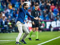27th October 2019; Estadi Cuitat de Valencia, Valencia, Spain; La Liga Football, Levante versus Espanyol; Espanyol Manager Pablo Machin animiated on the sideline - Editorial Use