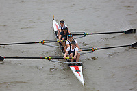 Crew: 168   Cantabrigian   WC 4-<br /> <br /> Veteran Fours Head 2017<br /> <br /> To purchase this photo, or to see pricing information for Prints and Downloads, click the blue 'Add to Cart' button at the top-right of the page.