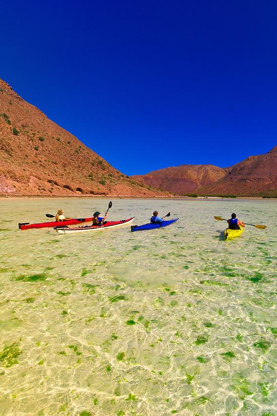 Sea kayaking in El Cardonal Bay, Isla Espiritu Santo, Sea of Cortes, Baja California Sur, Mexico
