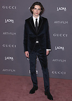 LOS ANGELES - NOVEMBER 4:  Timothee Chalamet at the 2017 LACMA Art + Film Gala at LACMA on November 4, 2017 in Los Angeles, California. (Photo by Scott Kirkland/PictureGroup)