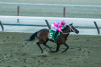 NEW YORK, NY - APRIL 08: Miss Sky Warrior #5, ridden by Paco Lopez, wins the Gazelle Stakes at Aqueduct Racetrack on April 8, 2017 in the Ozone Park,  New York. (Photo by Sue Kawczynski/Eclipse Sportswire/Getty Images)