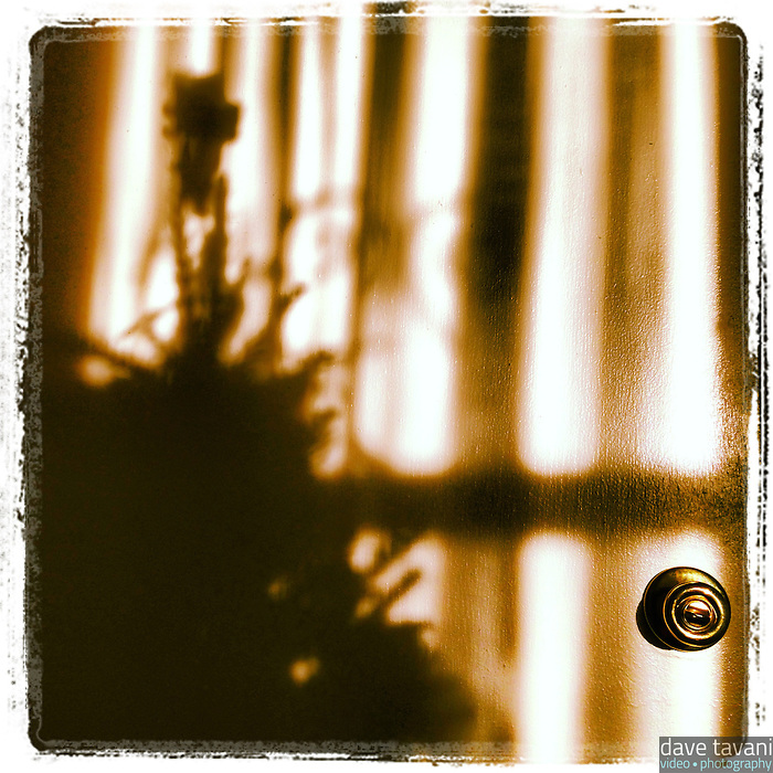 The morning sun creates a shadow of our Christmas tree on our basement door on December 6, 2012.