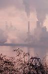 Pollution, Pulp Mill, Tacoma, Washington, Puget Sound, bird, robin, smog, Port of Tacoma, Commencement Bay, Tacoma, Washington State, Pacific Northwest,