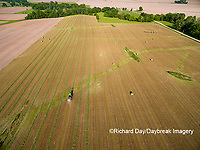 63801-10907 Hay bales in field-aerial Marion Co. IL