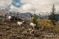 bringing em down Cowboys working and playing. Cowboy Cowboy Photo Cowboy, Cowboy and Cowgirl photographs of western ranches working with horses and cattle by western cowboy photographer Jess Lee. Photographing ranches big and small in Wyoming,Montana,Idaho,Oregon,Colorado,Nevada,Arizona,Utah,New Mexico.