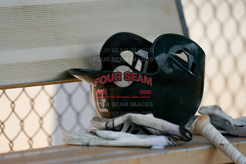 Dartmouth Big Green batting helmet and gloves during a game against the Indiana State Sycamores on February 21, 2020 at North Charlotte Regional Park in Port Charlotte, Florida.  Indiana State defeated Dartmouth 1-0.  (Mike Janes/Four Seam Images)