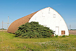 White wooden semi-gothic arch barn, rural Ill.