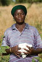Burkina Faso , Anbau von fairtrade und Biobaumwolle auf Biohof von Farmer Nayaga Daniel im Dorf Dapury bei Ouagadougou, Frau Madeleine Pogoby / Burkina Faso - organic and fairtrade cotton project