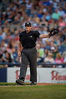 Umpire Greg Roemer during an Eastern League game between the New Hampshire Fisher Cats and Trenton Thunder on August 20, 2019 at Arm & Hammer Park in Trenton, New Jersey.  New Hampshire defeated Trenton 7-2.  (Mike Janes/Four Seam Images)