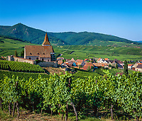 France, Alsace, Department Haut-Rhin, Hunawihr: Wine village at Route des vins d'Alsace and Naturepark Ballons des Vosges with church Saint-Jacques | Frankreich, Elsass, Départements Haut-Rhin, Hunaweier (Hunawihr): Weinort an der Elsaessischen Weinstrasse im Naturpark Ballons des Vosges mit der Wehrkirche Saint-Jacques