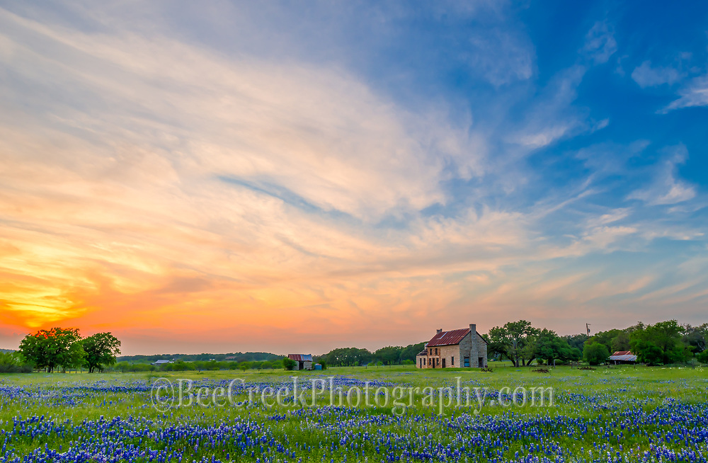 This image has a sort of dreamy look with the sky and bluebonnets with the farmhouse in the scene.  We loved the sunset on this day it had this wildness in the sky with the wispy clouds and orange sunset with the field of bluebonnets as they lead up to this old farmhouse in the distance.