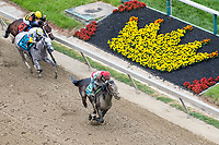 BALTIMORE, MD - MAY 20: No Mo Dough  #5, ridden by Jose Ortiz, wins the LARC Sir Baron Stakes on Preakness Stakes Day at Pimlico Race Course on May 20, 2017 in Baltimore, Maryland.(Photo by Dan Heary/Eclipse Sportswire/Getty Images)