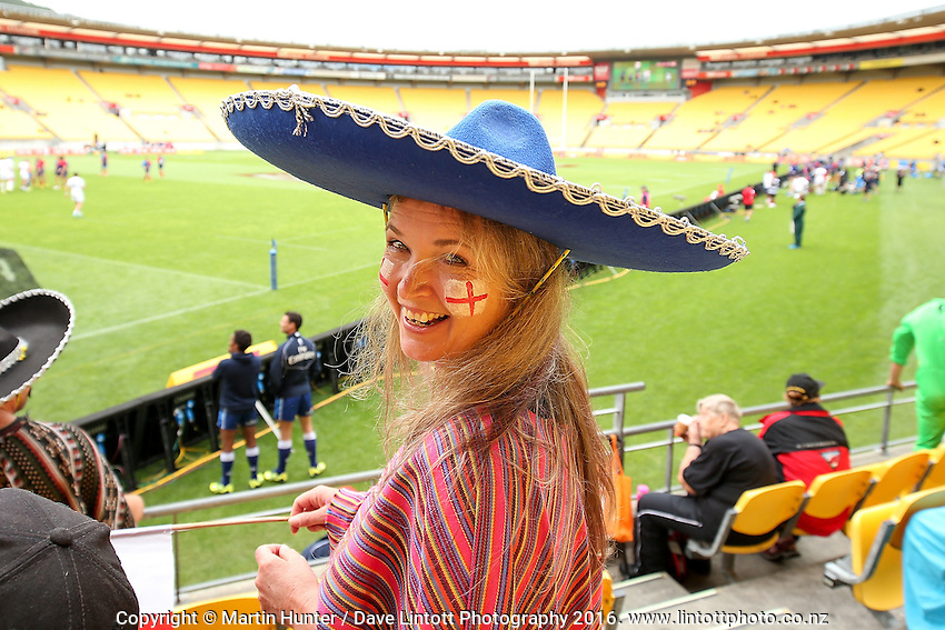 Sevens fans celebrate during the 2016 HSBC Wellington Sevens at Westpac Stadium, Wellington, New Zealand on Saturday, 30 January 2016. Photo: Martin Hunter / lintottphoto.co.nz