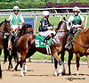 Trupancy Links before The Our Mims Stakes at Delaware Park racetrack on 6/4/14