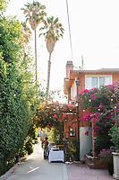Animal Ashram L.A. Cocktails and Conversation