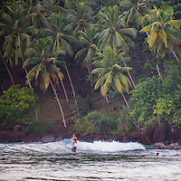 Mirissa Beach, woman surfing in front of palm trees, South Coast of Sri Lanka, Asia. This is a photo of a woman surfing in front of palm trees on Mirissa Beach, Sri Lanka, Asia. Mirissa Beach is a popular surfing spot on the South Coast of Sri Lanka.