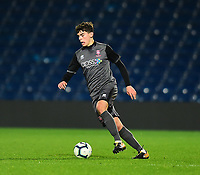 Lincoln City U18's Gianluca Bucci<br /> <br /> Photographer Andrew Vaughan/CameraSport<br /> <br /> FA Youth Cup Round Three - West Bromwich Albion U18 v Lincoln City U18 - Tuesday 11th December 2018 - The Hawthorns - West Bromwich<br />  <br /> World Copyright &copy; 2018 CameraSport. All rights reserved. 43 Linden Ave. Countesthorpe. Leicester. England. LE8 5PG - Tel: +44 (0) 116 277 4147 - admin@camerasport.com - www.camerasport.com