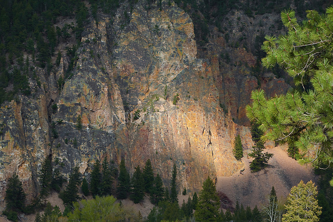 A spot of sunlight on a rock wall in the Rock Creek drainage in western Montana
