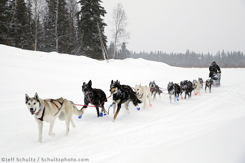 Curt Perano drives his team on the Takotna river about a mile before the checkpoint just before dawn on Wednesday March 6, 2013...Iditarod Sled Dog Race 2013..Photo by Jeff Schultz copyright 2013 DO NOT REPRODUCE WITHOUT PERMISSION