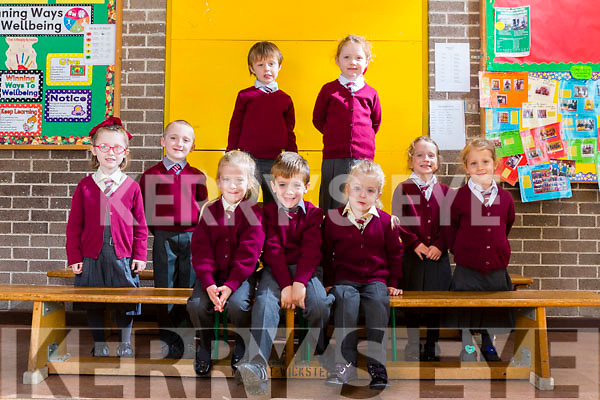 Front Row Triplets: Lucey, Donal and Laura McMahon,<br /> Twins Left: Molly and Bredan Sheehy.<br /> Twins Standing: Jack and Clodagh Marie Gaire<br /> Twins Right: Orla and Maeve O'Brien