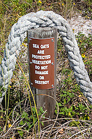 Rope and sign protecting Sea Oats on Gulf of Mexico beach.  Indian Shores Tampa Bay Area Florida USA