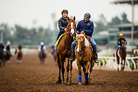 ARCADIA, CA - APRIL 02: Justify with Drayden Van Dyke walk off the track after their workout at Santa Anita Park on April 02, 2018 in Arcadia, California. (Photo by Alex Evers/Eclipse Sportswire/Getty Images)