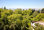 View over green tree tops from the Alhambra, Granada, Spain