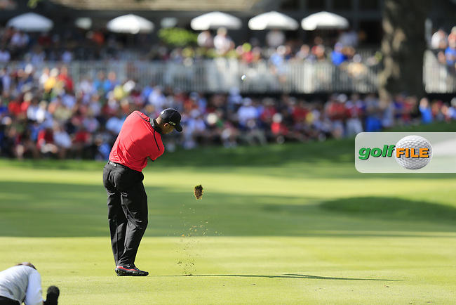 Tiger Woods (USA) plays his 3rd shot on the 16th hole during Sunday's Final Round of the 2013 Bridgestone Invitational WGC tournament held at the Firestone Country Club, Akron, Ohio. 4th August 2013.<br /> Picture: Eoin Clarke www.golffile.ie