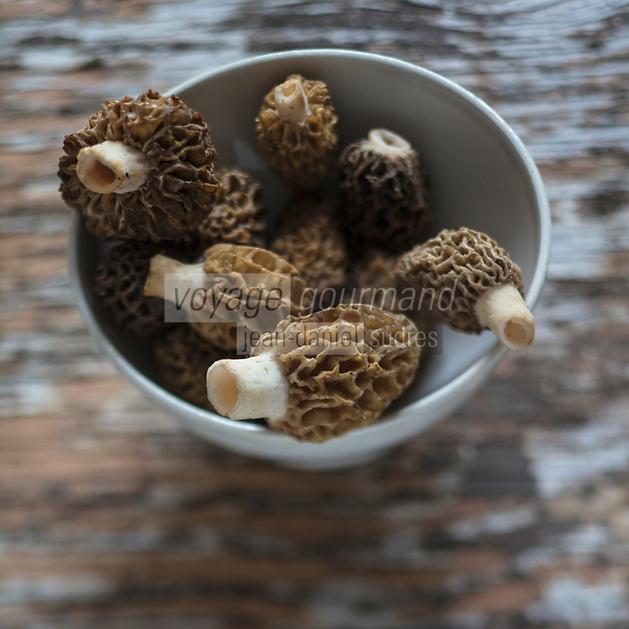 Gastronomie Générale/ Morilles - Stylisme : Valérie LHOMME / General Gastronomy / Morels - Stylisme: Valérie LHOMME