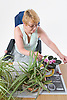 Female wheelchair user potting on some plants,