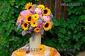 Carl, FLOWERS, photos, SWLA12013,#f# Blumen, Natur, flores, naturaleza