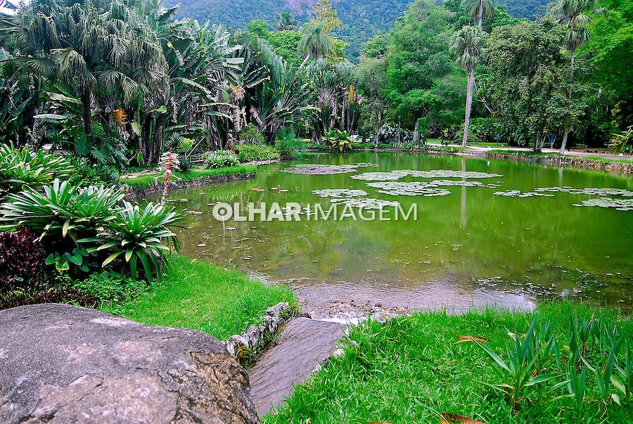 Lago das Vitórias-Régias no Jardim Botânico. Rio de Janeiro. 2006. Foto de Luciana Whitaker.
