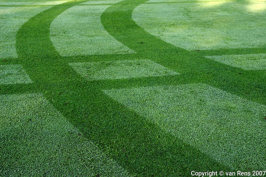Tracks and pattern through the morning dew on a manicured golf airway.
