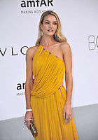 Rosie Huntington-Whitely  at the 21st annual amfAR Cinema Against AIDS Gala at the Hotel du Cap d'Antibes.<br /> May 22, 2014  Antibes, France<br /> Picture: Paul Smith / Featureflash