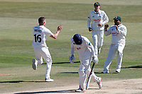 Matt Milnes celebrates taking the wicket of Varun Chopra during Essex CCC vs Nottinghamshire CCC, Specsavers County Championship Division 1 Cricket at The Cloudfm County Ground on 22nd June 2018