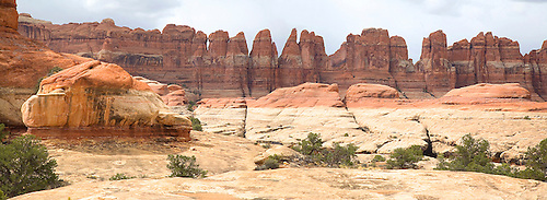 A PANORAMA SHOT OF THE NEEDLES ROCK FORMATIONS ON THE CHESLER PARK TRAIL IN THE NEEDLES DISTRICT IN CANYONLANDS NATIONAL PARK,UTAH