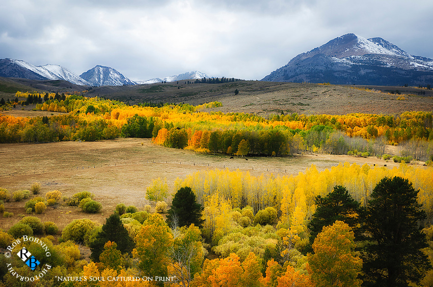 Conway Summitt is especially gorgeous in autumn, where snowy peaks sit atop rolling golden hills glowing with aspen