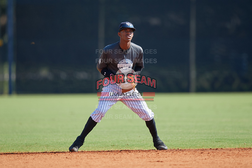 New York Yankees shortstop Alexander Vargas (19) during an Instructional League intrasquad game on September 27, 2019 at New York Yankees Minor League Complex in Tampa, Florida.  (Mike Janes/Four Seam Images)