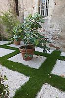 Europe/France/Midi-Pyrénées/46/Lot/Cahors: Le Jardin: Le Biblique faits partie des jardins secrets de Cahorsau chevet de l'église St-Urcisse