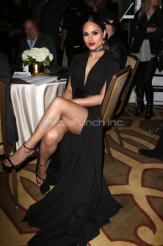 BEVERLY HILLS, CA - March 21: Pia Toscano, At Generosity.org Fundraiser For World Water Day_Inside At Montage Hotel In California on March 21, 2017. Credit: FS/MediaPunch